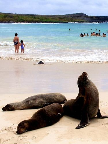 天堂岛屿:圣克里斯托瓦尔岛