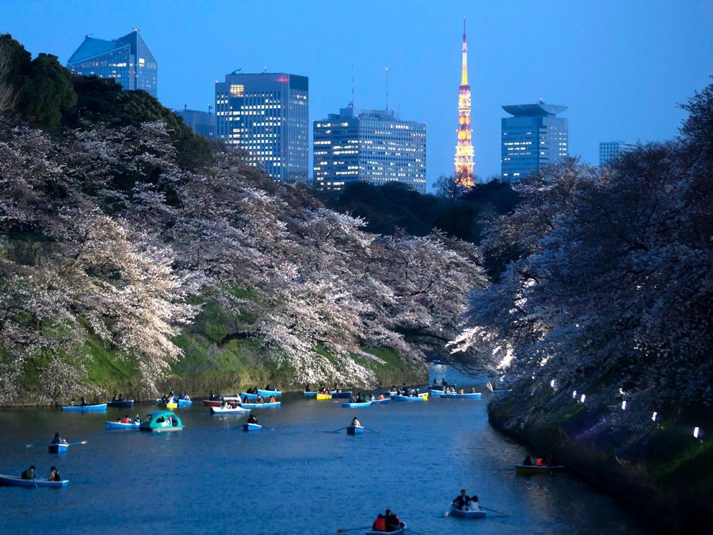 中日政府在房地产政策上的巨大区别